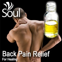 Essential Oil Back Pain Relief - 50ml