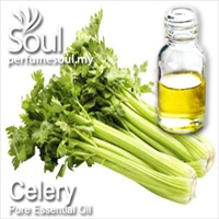 Pure Essential Oil Celery - 50ml