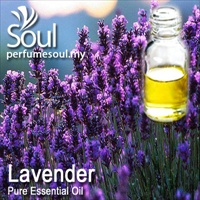 Pure Essential Oil Lavender - 50ml